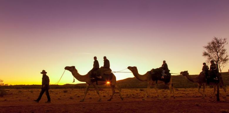 Sunset Camel Ride- Pyndan Camel Tracks